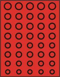 Lindner 2955 muntenbox  rookglas R-Euroset